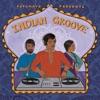 Putumayo Presents Indian Groove