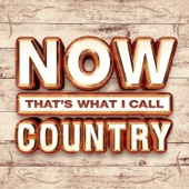 Various Artists - NOW That's What I Call Country artwork