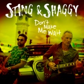 Sting & Shaggy - Don't Make Me Wait artwork