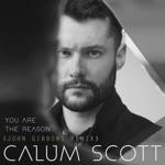 You Are the Reason (John Gibbons Remix) - Single