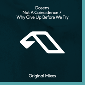 Not a Coincidence / Why Give up Before We Try - EP