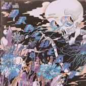 The Shins - Name For You (Flipped) artwork
