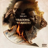 Berner & Young Dolph - Tracking Numbers  artwork