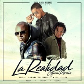 La Realidad (Remix) [feat. Ozuna & Wisin] - Pusho