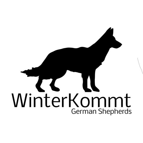 WinterKommt Podcast