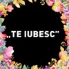 Te Iubesc (feat. Alinka) - Single, Direcția 5