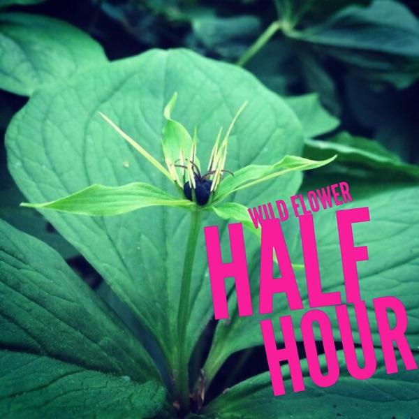 Wild Flower (Half) Hour