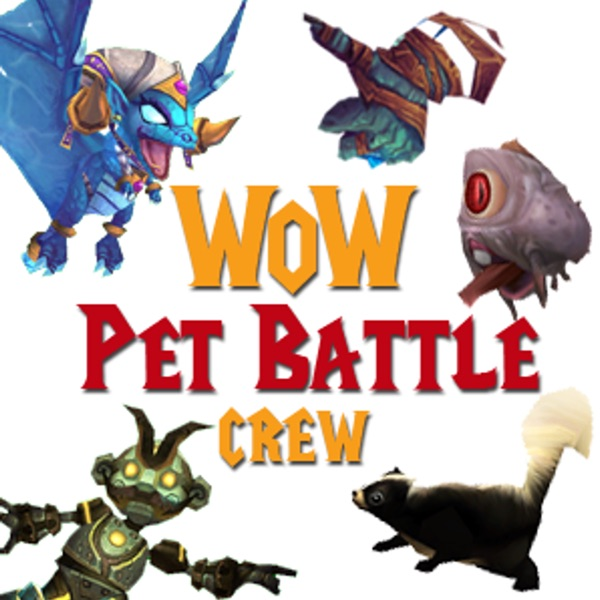 wow how to start pet battle