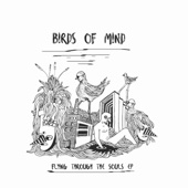 Birds of Mind - Palang Kuh artwork