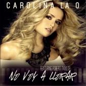 No Voy a Llorar (feat. Robert Taylor)