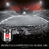 Yankı Alper - Beşiktaşım Sevmişiz Seni artwork