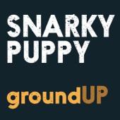 Snarky Puppy - Bent Nails artwork