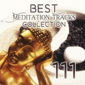 111 Best Meditation Tracks Collection: Oasis Sounds of Nature with Native American Flute for Deep Relaxation, Japanese Zen Garden Music, Pure Massage Music, Healing Spa, Serenity Sleep Songs