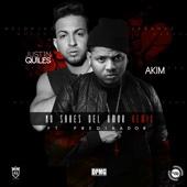 No Sabes Del Amor (feat. Predikator) [Remix]