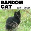 Random Cat - Single