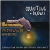 Underwater Sunshine, Counting Crows