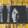 Amarelo (feat. Ivan Lins, Marku Ribas & Patricia Lobato) ジャケット写真