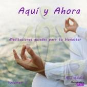 Aqui y Ahora: Meditaciones Guiadas para Tu Bienestar, Vol. II