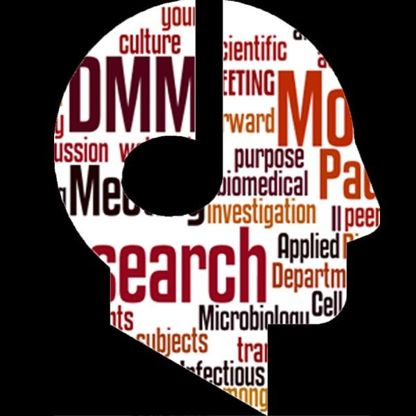 I seminari del DMM