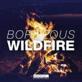 Wildfire - Borgeous
