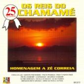 25 Sucessos: Os Reis do Chamamé (Homenagem a Zé Correia)