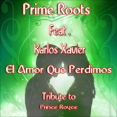 El Amor Que Perdimos (Karaoke Version) [Extended Remix] [Originally Performed by Prince Royce] [feat. Karlos Xavier]
