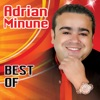 Best Of, Adrian Minune
