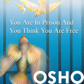 You Are in Prison & You Think You Are Free
