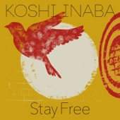 Stay Free - Single