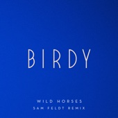 Wild Horses (Sam Feldt Remix) - Single cover art