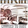 Carried To Dust, Calexico