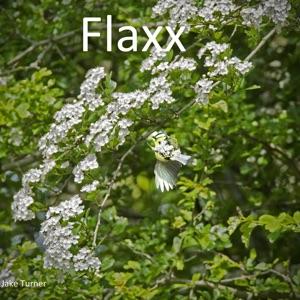 Jake Turner - Flaxx