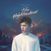 Troye Sivan - Blue Neighbourhood  artwork