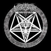 [Download] Enter the Eternal Fire (Bathory Cover) MP3