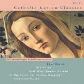 Ave Maria, Op. 52 No. 6, D. 839 (Arr. for High Voice, Choir & Harp)
