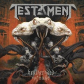 Brotherhood of the Snake - Testament Cover Art