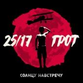 25/17 - Солнцу навстречу (feat. Грот) обложка