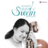 Sound of Swan (Instrumental)