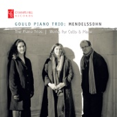 Piano Trio No. 1 in D Minor, Op. 49, MWV Q 29: I. Molto allegro agitato - Gould Piano Trio