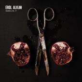 FABRICLIVE 77: Erol Alkan cover art