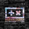 Forbidden Voices Single