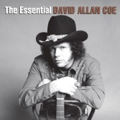Tennessee Whiskey - David Allan Coe
