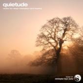 Quietude - Single