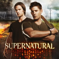 Supernatural, Season 8 (iTunes)