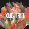 Juanjo Gómez & Xuc Trío - Amistad Album Cover