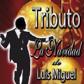 Tributo: La Navidad de Luis Miguel