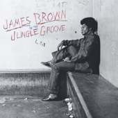 In the Jungle Groove - James Brown Cover Art