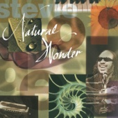 Natural Wonder - Stevie Wonder
