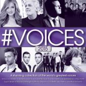 #VOICES 2015