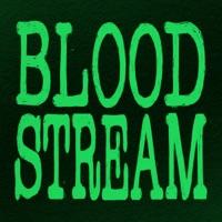Bloodstream (Arty Remix) - Single - Ed Sheeran & Rudimental